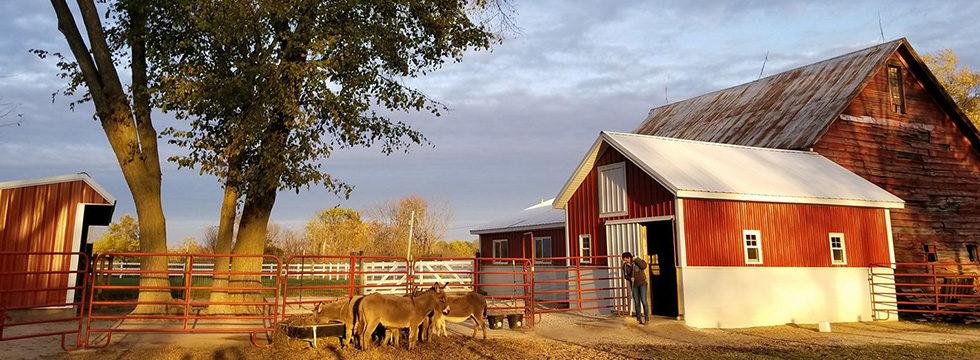 Blue Ridge Community Farm